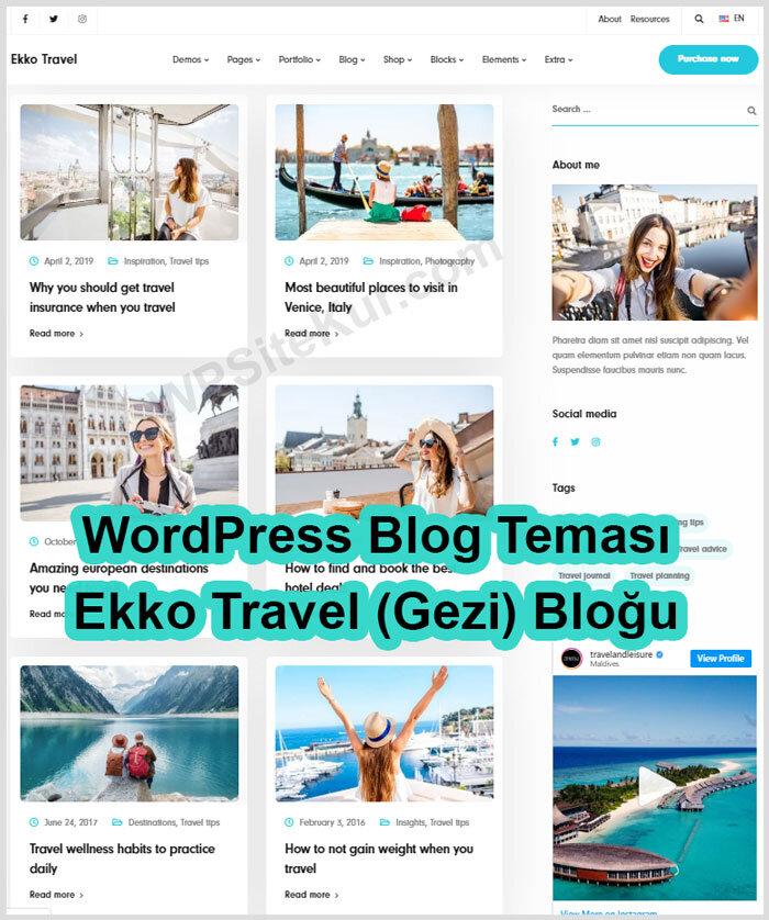 WordPress Blog Teması Ücretli Premium Ekko