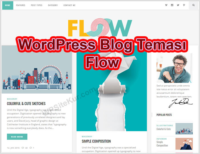 En İyi WordPress Blog Teması Flow