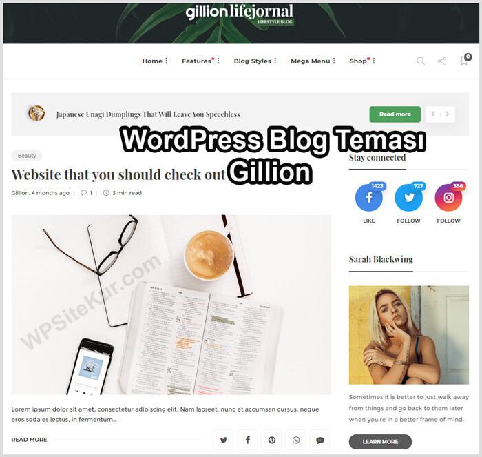 WordPress Blog Teması Ücretli Premium Gillion