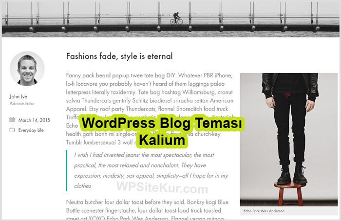 WordPress Blog Teması Ücretli Premium Kalium