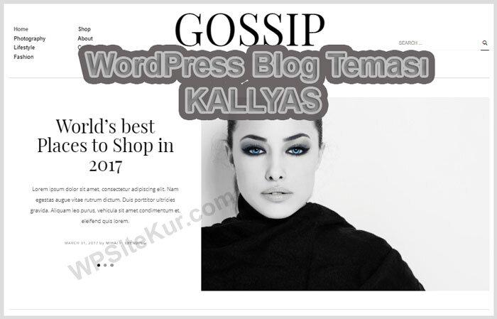 WordPress Blog Temaları KALLYAS