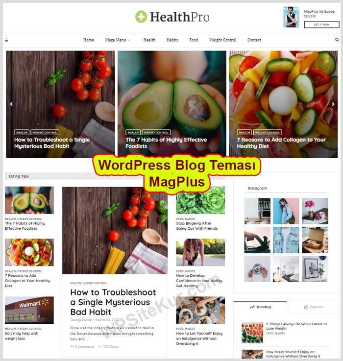 WordPress Theme MagPlus