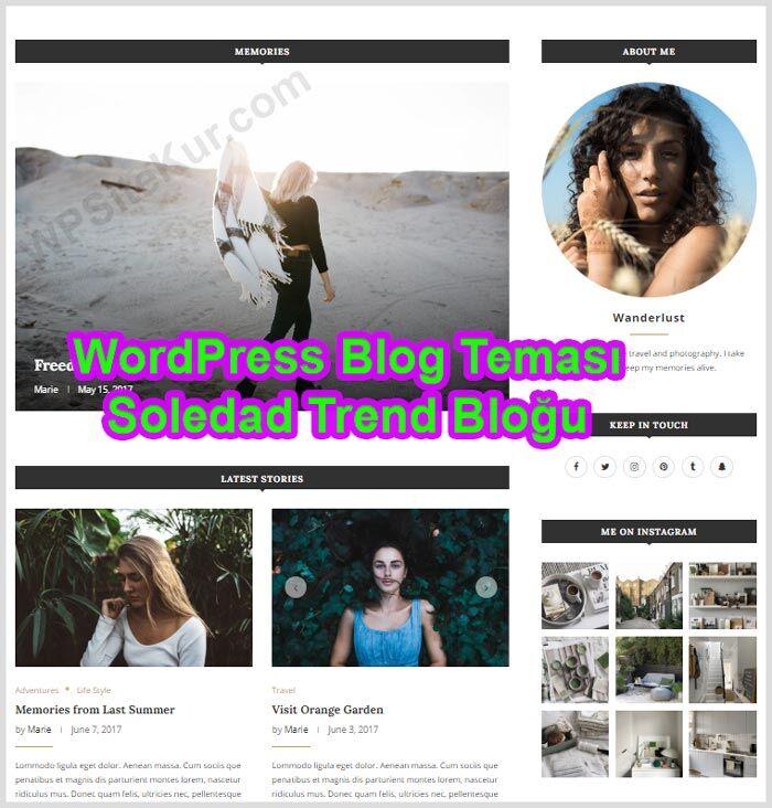 WordPress Blog Temalası Ücretli Premium Soledad