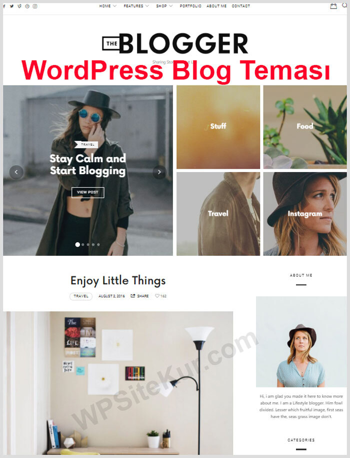 WordPress Blog Teması Ücretli Premium The Blogger