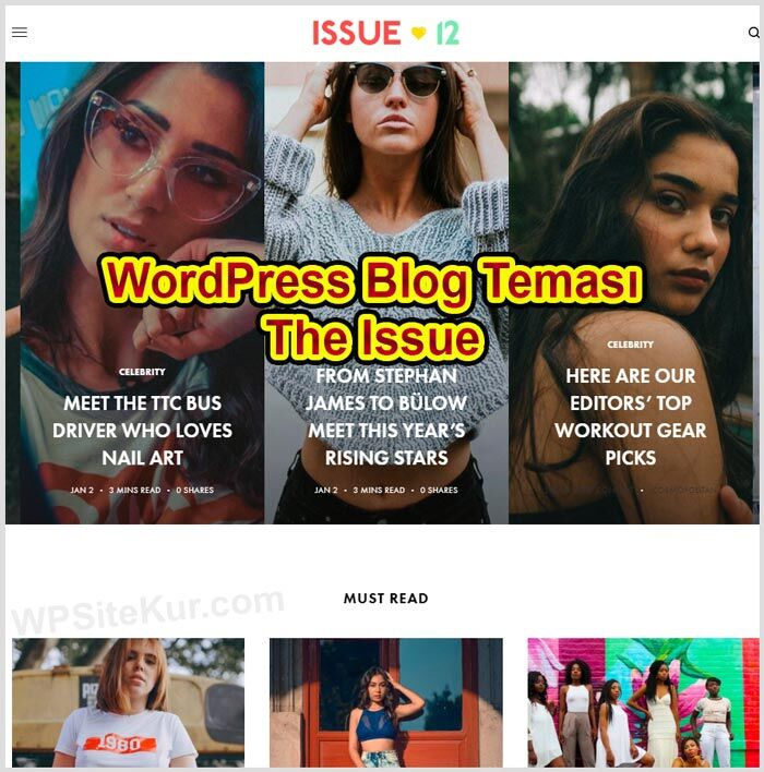 WordPress Blog Teması  The Issue (Kişisel Ücretli WP Themes)