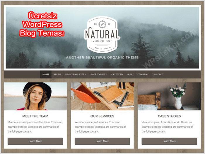 Ücretsiz WordPress Kişisel Blog Teması Nnatural Lite
