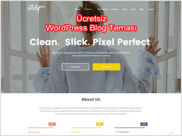 WordPress Blog Teması illdy Ücretsiz