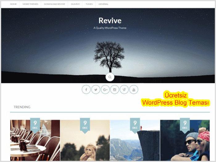 WordPress Blog Teması Revive