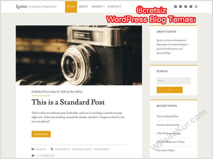 WordPress Blog Teması Ücretsiz ignite