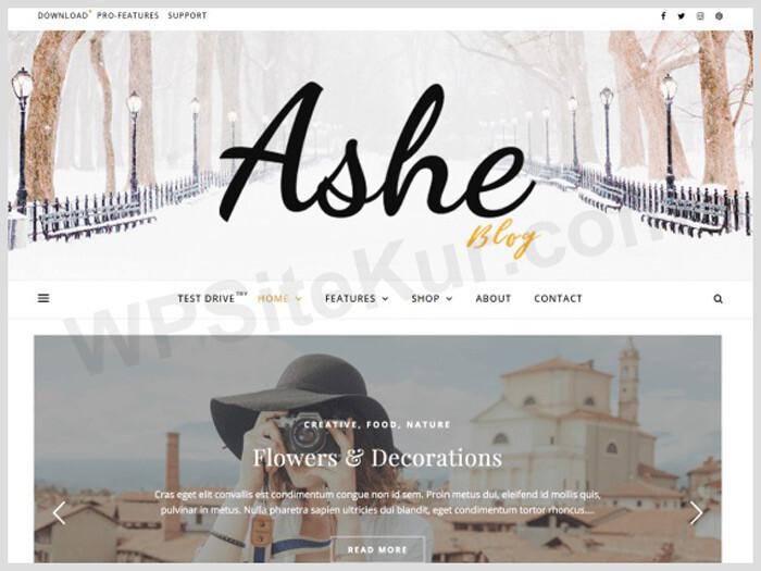 Ashe - WordPress Blog Theme Free