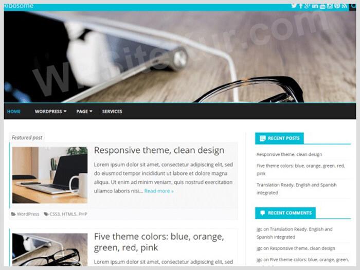 WordPress Blog Temaları Ribosome