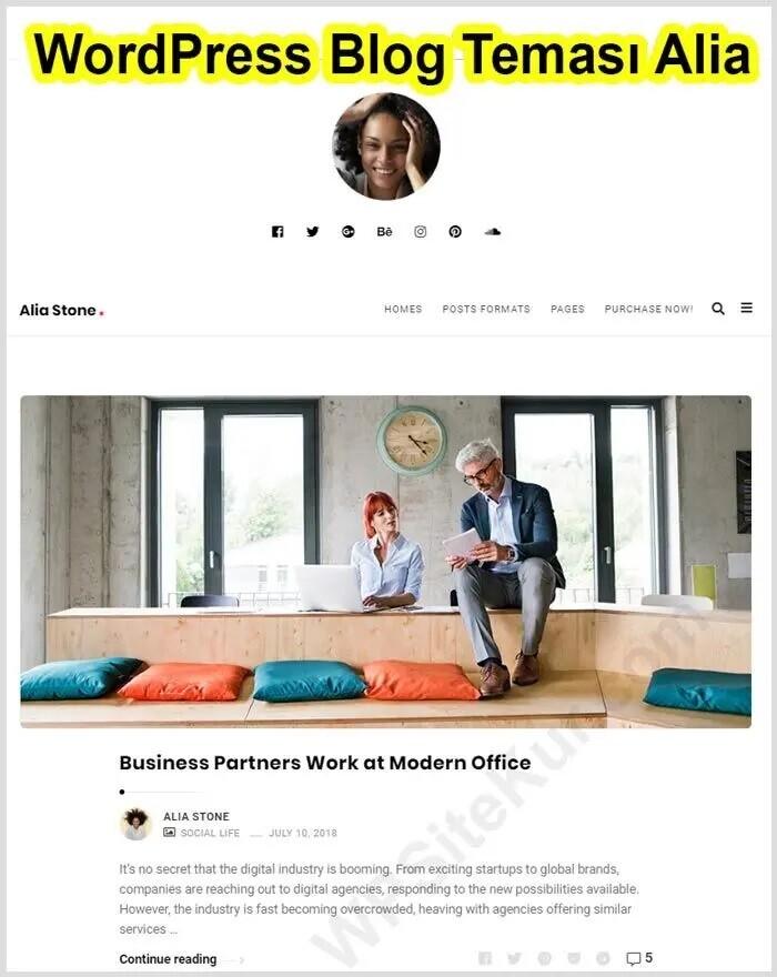 WordPress Kişisel Blog Temaları - Alia