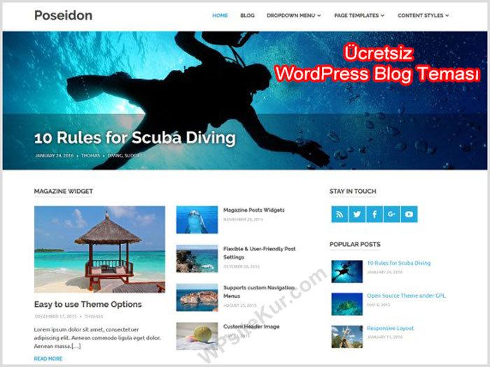 WordPress Kişisel Blog Teması Ücretsiz Posoidon