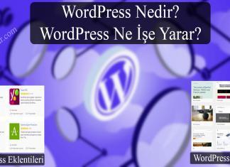 WordPress Nedir (WP Ne İşe Yarar)